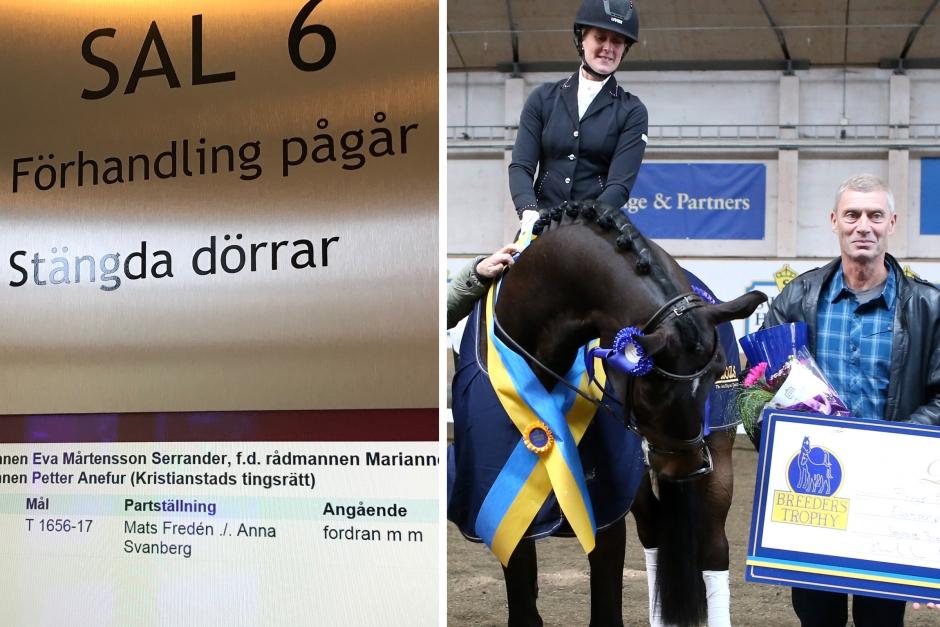 Tvist om svensk topphäst avgörs i rätten
