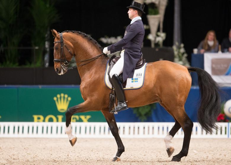 Hästsport, Stockholm International Horse Show,