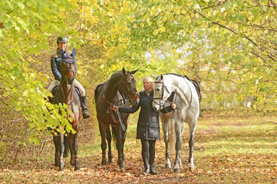 Linda Heed ny ryttare på UVM-hästar