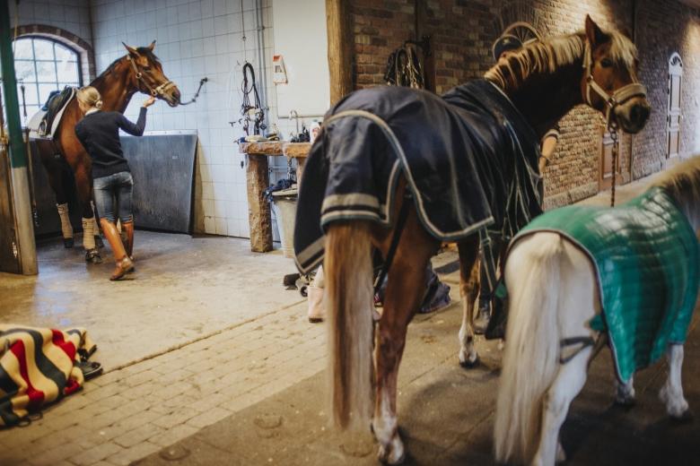 Tullstorp 2018-10-09Foto: Lotta Brundin Gyllensten/lottapictures