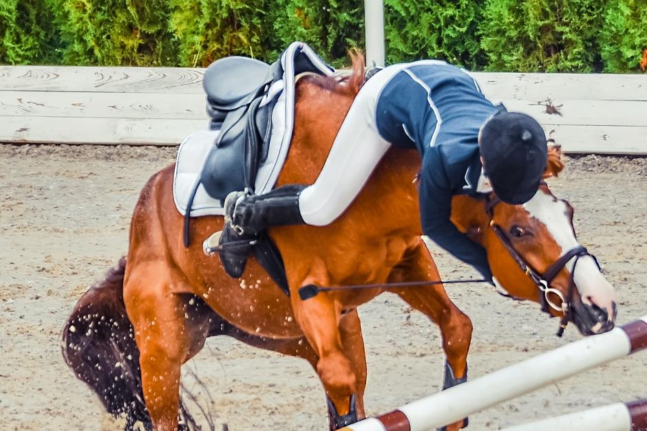 Avramling ger flest akuta skador i hästsammanhang