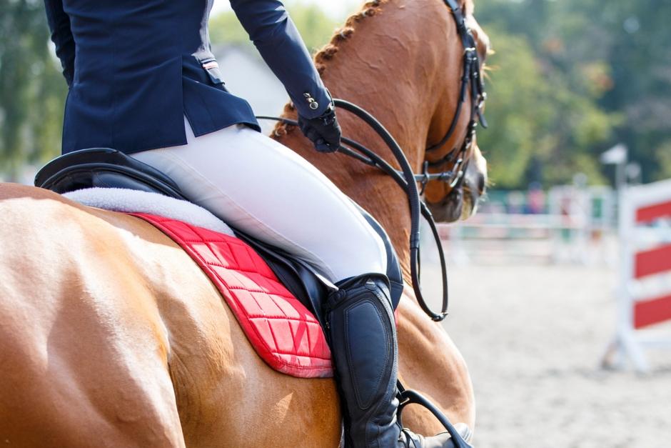 Startade med halt häst trots startförbud – överklagade avstängningarna