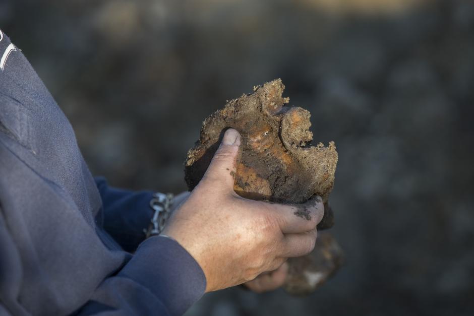 Ingela gräver upp sin häst Viktor efter 20 år