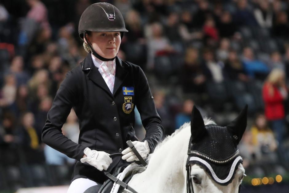 Ponny till Haid-Bondergaard från Amaranths nya ägare