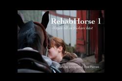 Rehab Horse 1