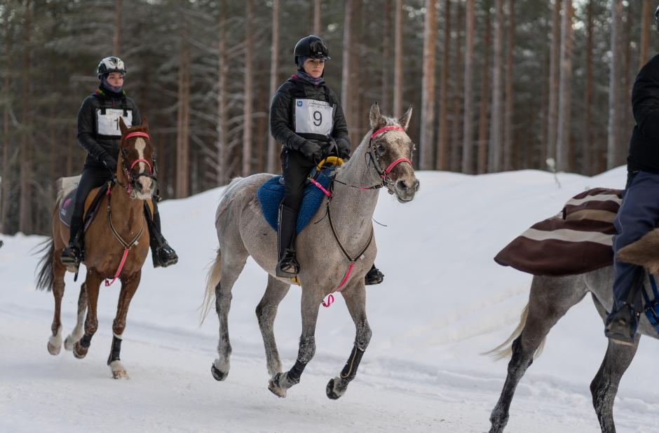 Hemmaryttaren bäst när internationellt snölopp avgjordes för andra året i rad
