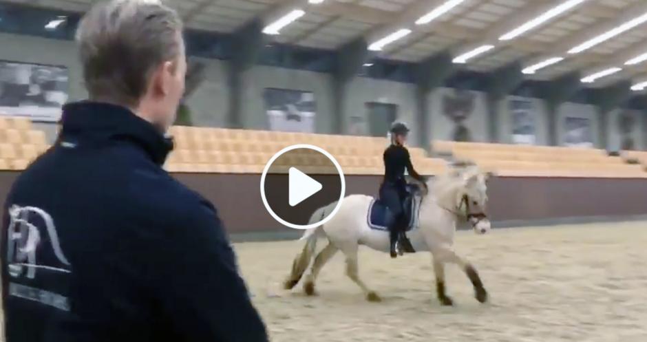 Lycklig ryttare rider sin fjordhäst för stjärnryttare på Blue Hors