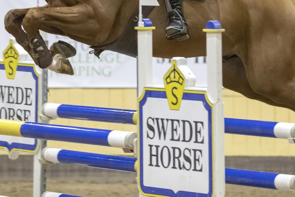 Beslut om delägarskapet i Swede Horse dras i långbänk hos förbundet