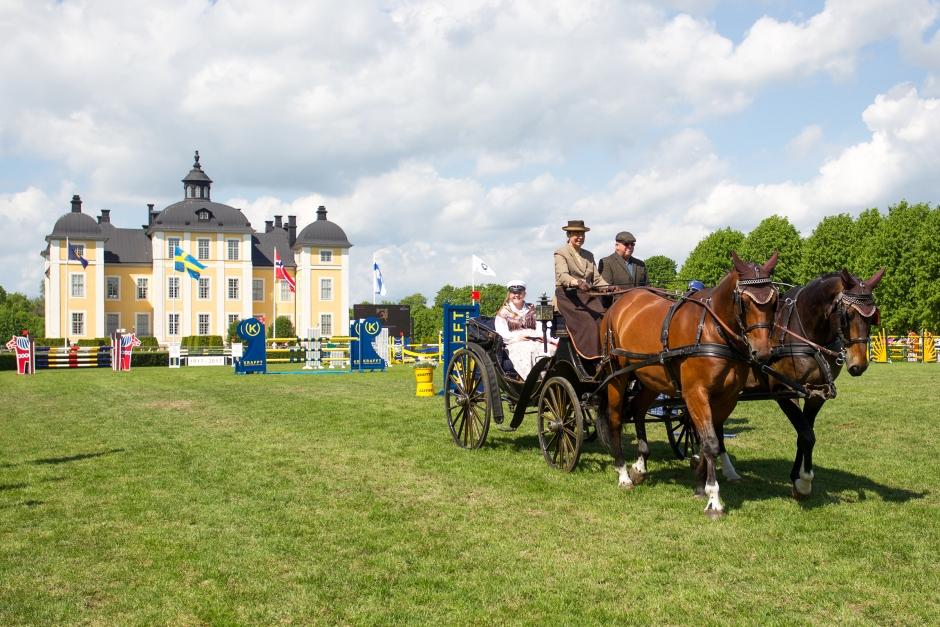 Ny person söks till mäktigaste uppdraget i häst-Sverige