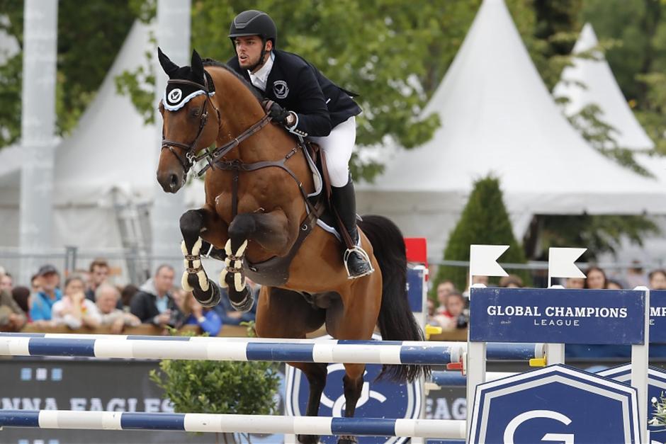 Auktionen med beslagtagna mästerskapshästar har startat