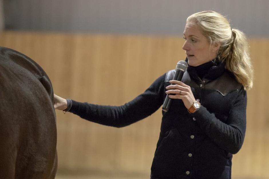 Equiterapeuten om att hålla koll på hästens muskler