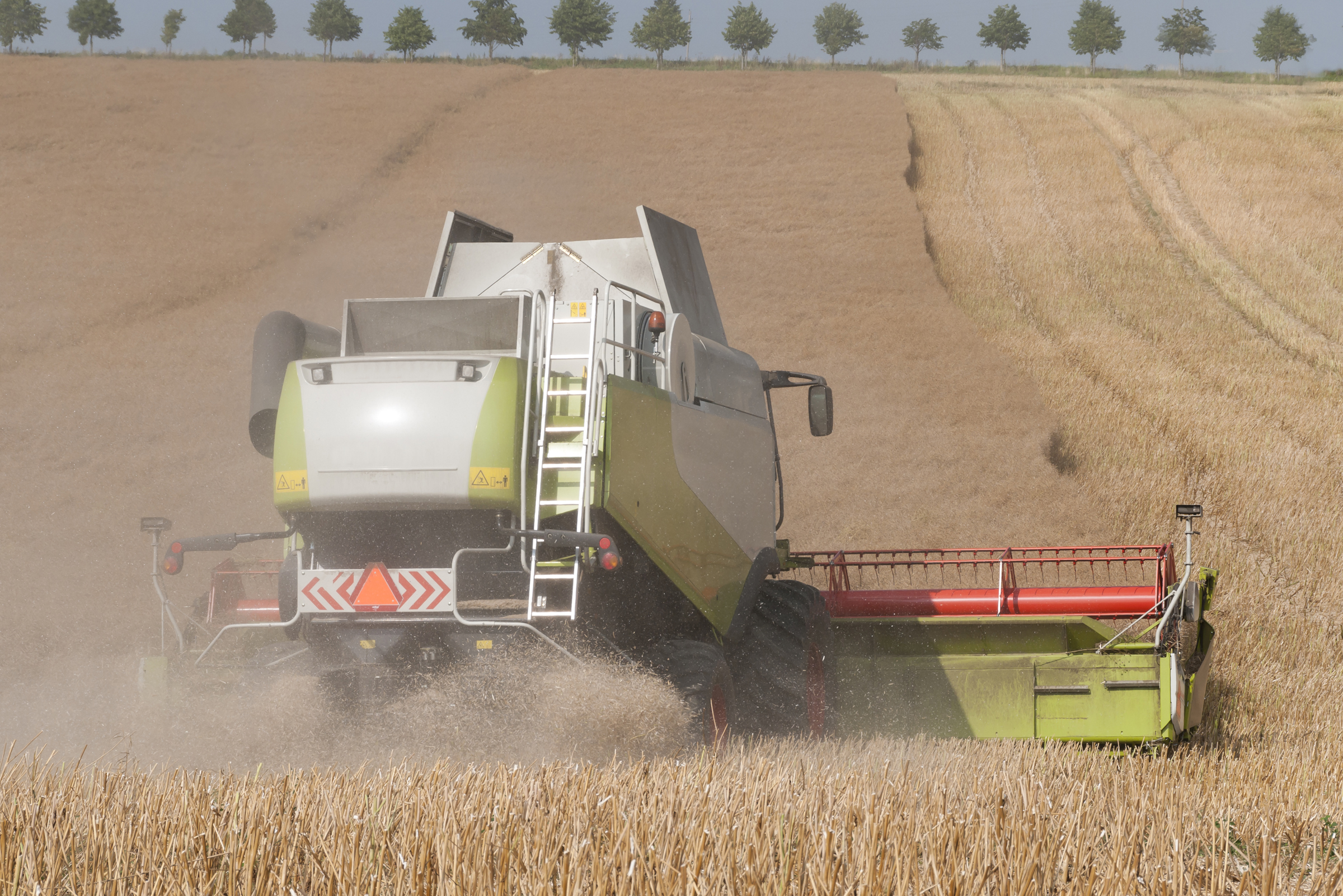 Harvest Time - Combine At Canola Field In Sweden