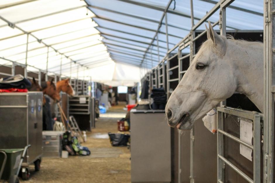 Svensk stortävling ställs in av smittskyddsskäl