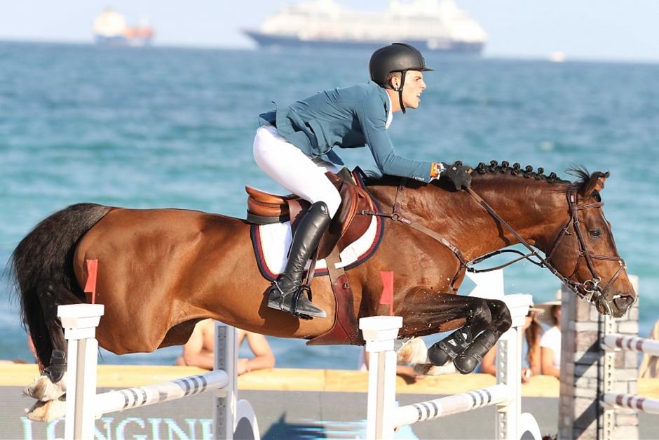 VDL Stud köpte en av de beslagtagna hästarna på auktion