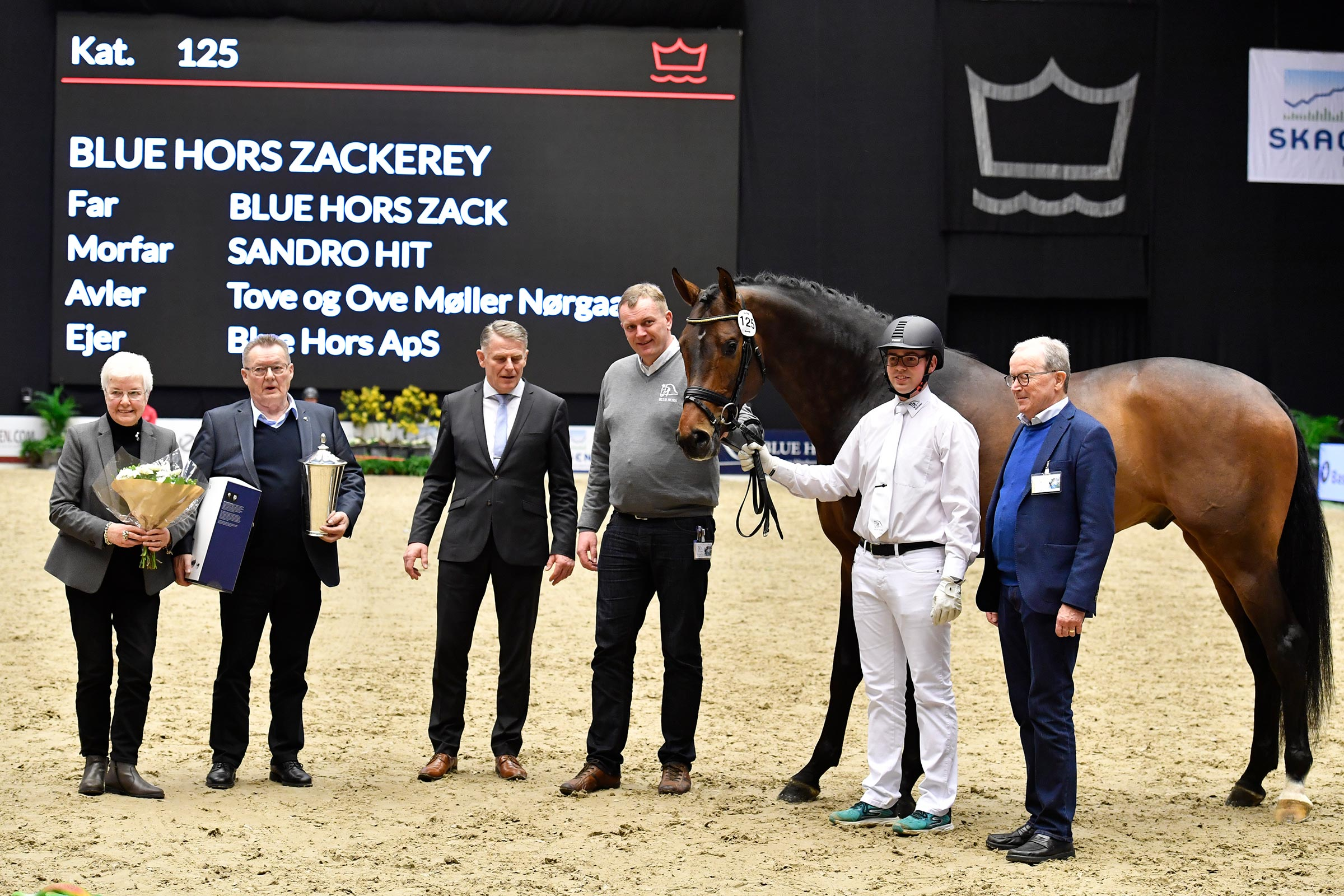 Best Danish-bred dressage stallion Blue Hors Zackerey was awarded the rare and coveted breeder medal in gold.