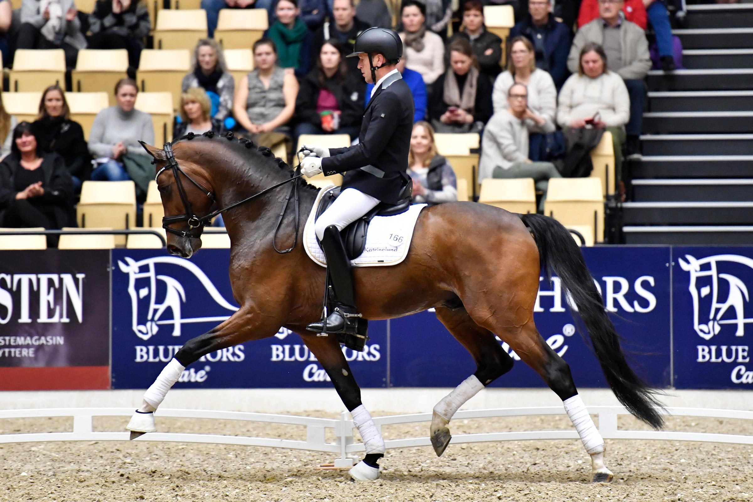 Bronze medallist from Ermelo last year, Danish Warmblood champion stallion, Hesselhøj Donkey Boy will be shown by his steady rider Jan Møller Christensen.