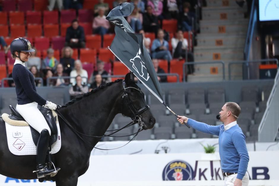 Med paraplyer och kyssar lär Tristan Tucker hästen dressyr
