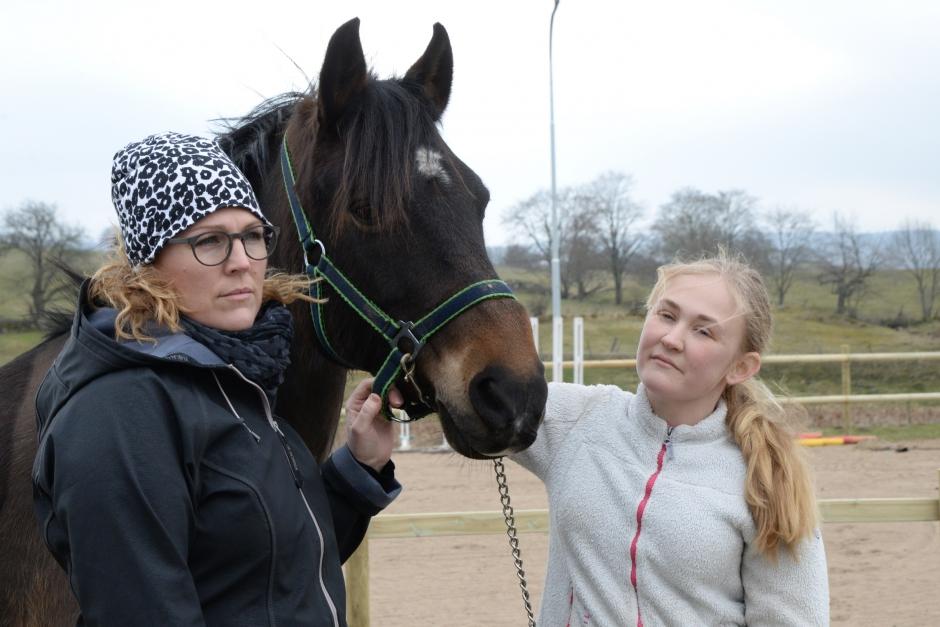 """Hästen som familjen köpte var sjuk: """"Det är som ett Moment 22"""""""
