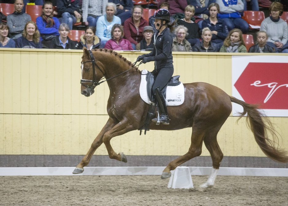 SWB Equestrian Weeks – detta händer under torsdagen