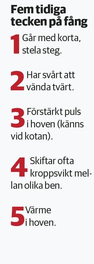 Fång4