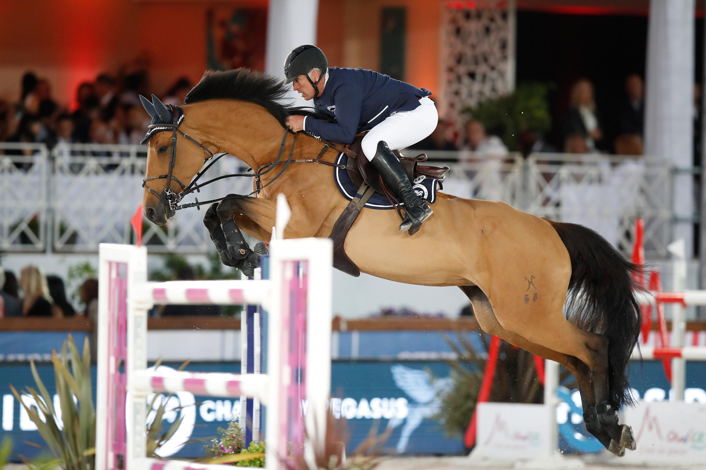 Team Chantilly Pegasus - Roger Yves Bost (FRA) on Castleforbes Talitha ph.Stefano Grasso/GCL CANNES 2019 DOWNLOAD