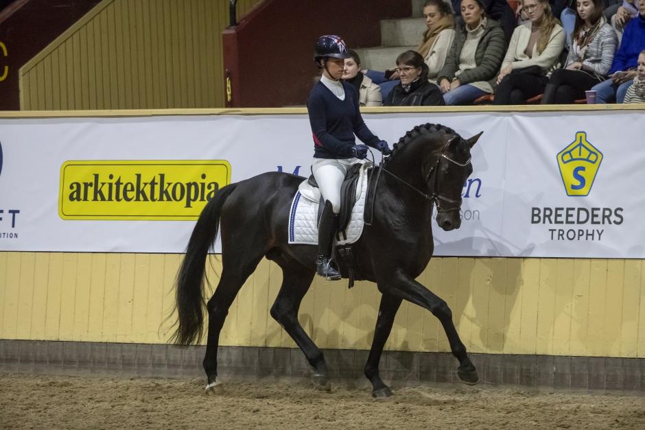 Biljetterna har släppts inför SWB Equestrian Weeks