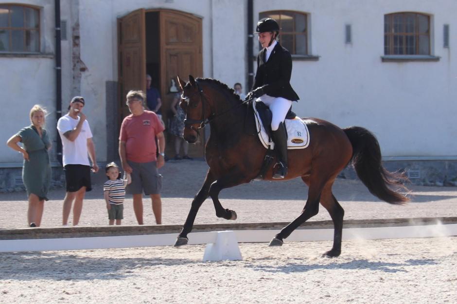 Finalklart för 4-åringarna till Falsterbo Horse Show