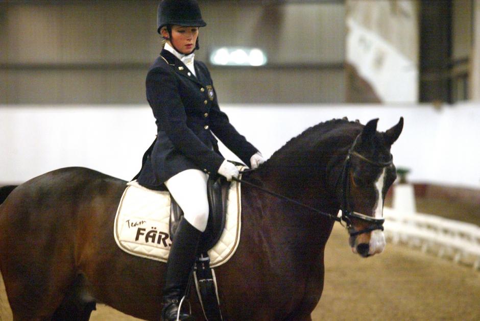 Svensk EM-ponny död