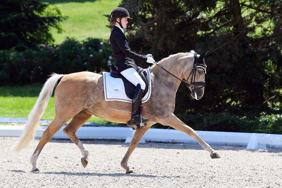 Svenska dressyrplaceringar i Hagen – ponnylaget fyra