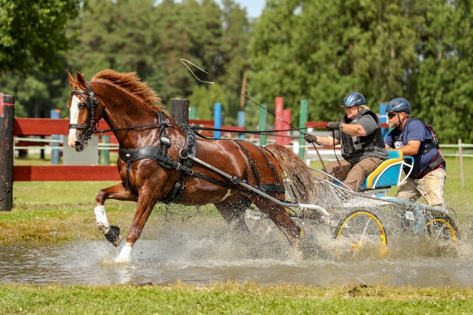 Klar segrare i svår klass på stortävling i sportkörning