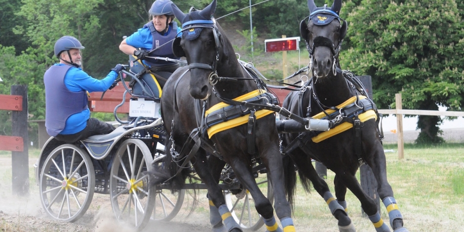 Blek svensk insats på VM i parkörning
