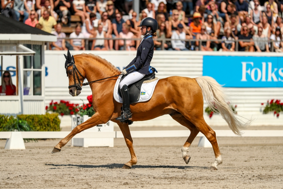 """Pytt Hamberg: """"Vi hade ett drömläge för medalj"""""""