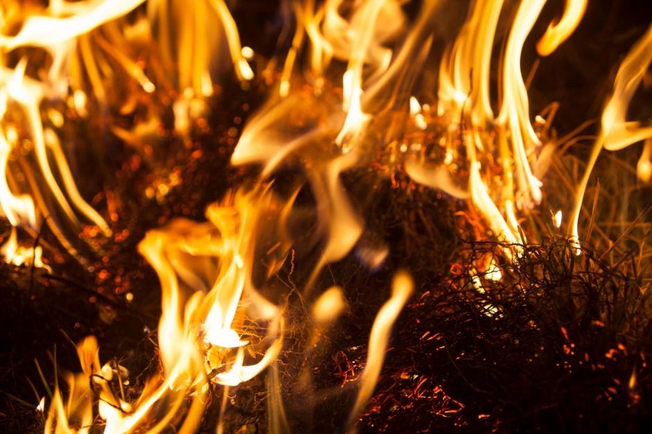Brännskadade stallägarna skickar hälsning från sjukhuset