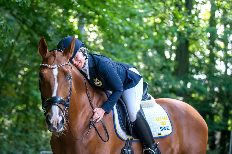 Rutinerad mästerskapshäst skadad – missar Paralympics