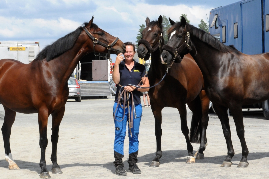 Nya hästar hos Cecilia Qvarnström