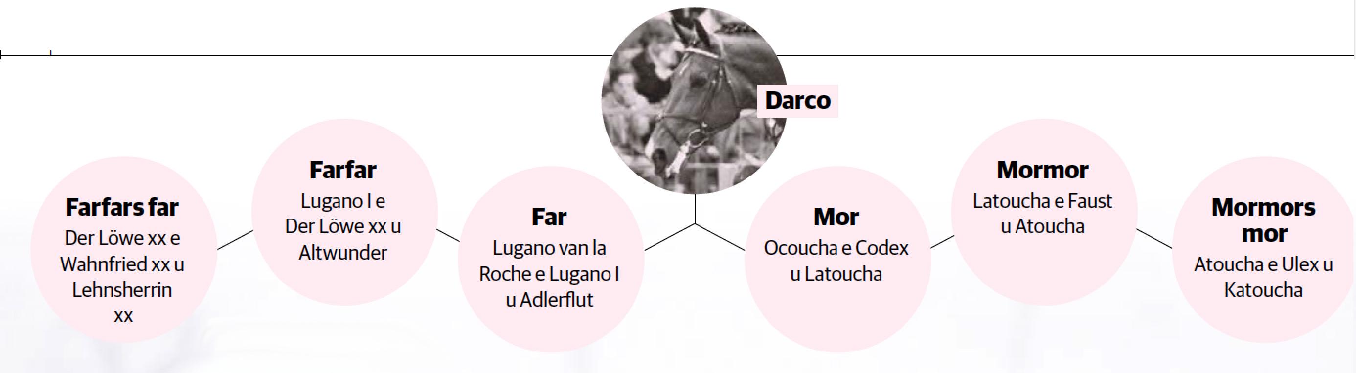 Darcostam4