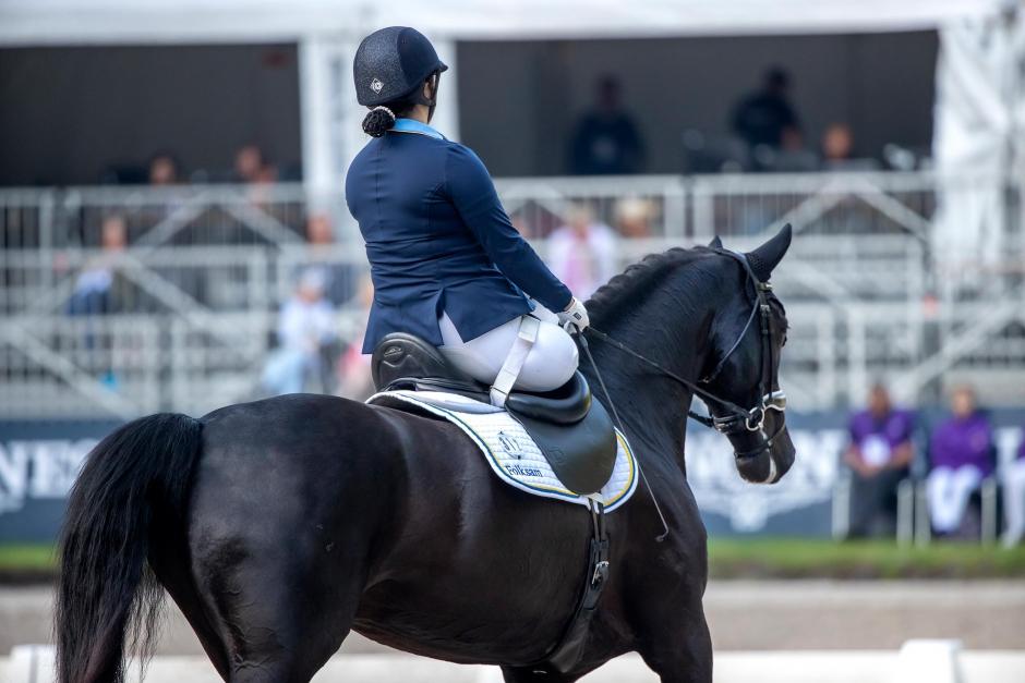 Tävlingar i Danmark och Italien ställs in