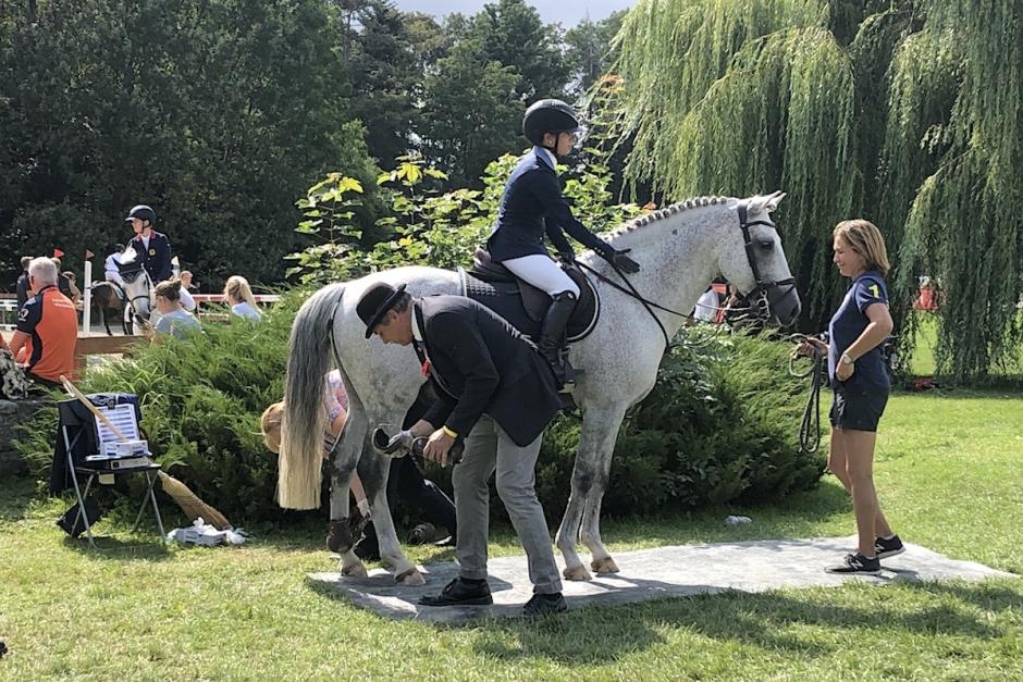 Bildfest: Häng med till ponny-EM