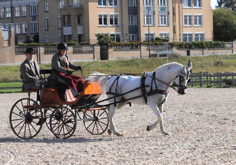 190905 Ribban_felix Foto Eva Österlund