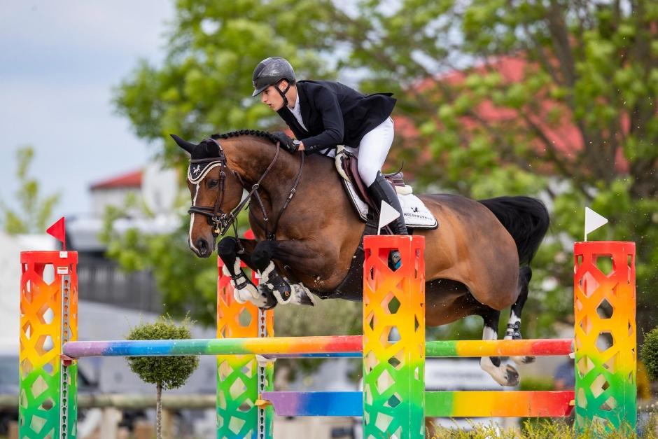 SWB-häst till Tiffany Foster