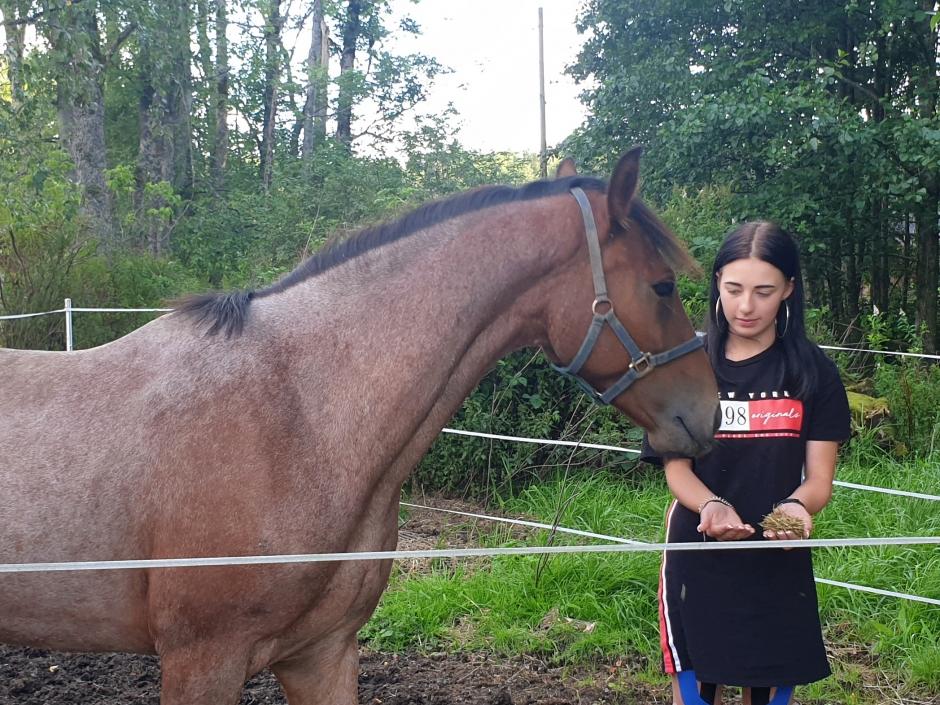 Livrädd ponny vann kurs för Pignon