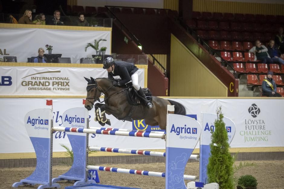 """Miss Blue 7-årig champion: """"En mycket personlig häst"""""""