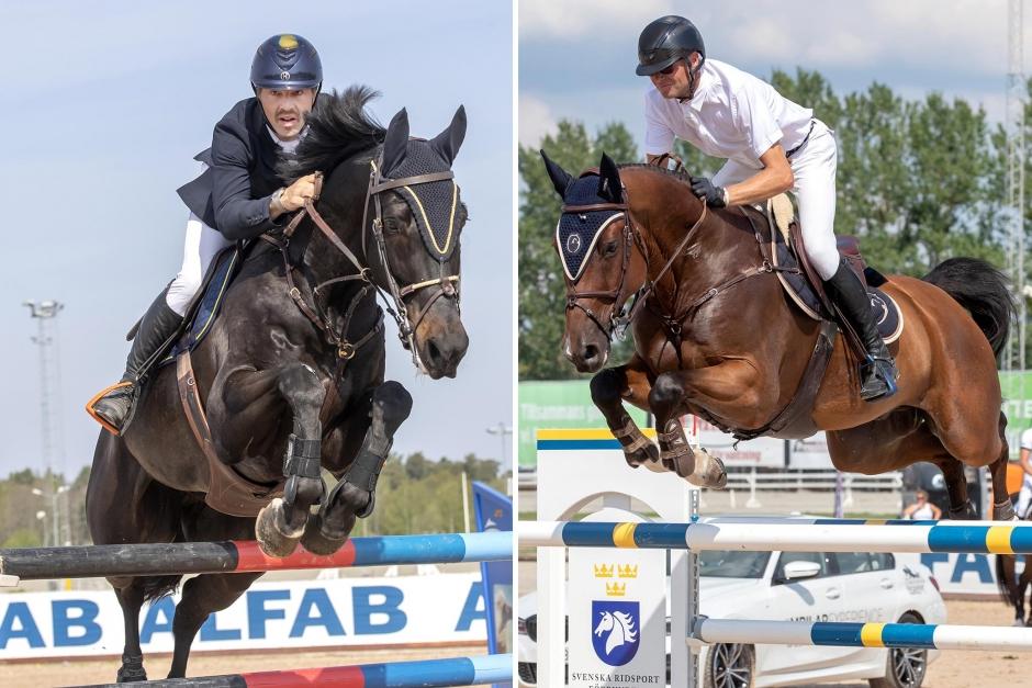 Flera svenska placeringar i toppklasser
