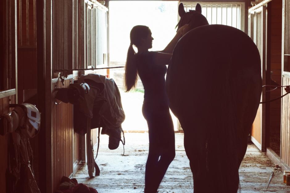 Snart dags för hästar i Sverige att få en adress