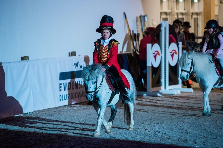 Ponnypappans bildfest: Hästlov, glädje och en clown