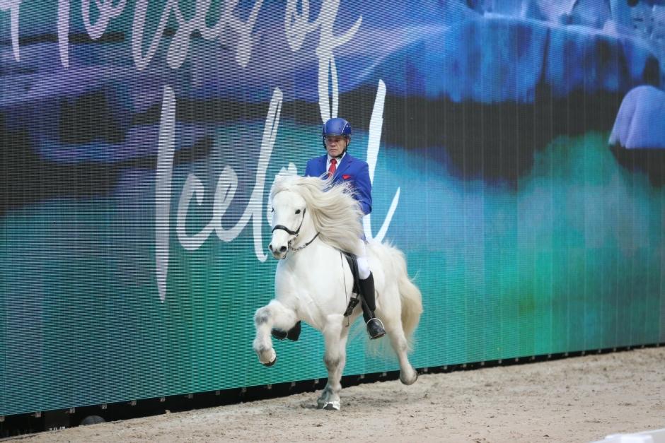 Ridsportförbundet stöttar Svenska Islandshästförbundets RF-ansökan