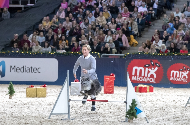 angelica augustsson agility