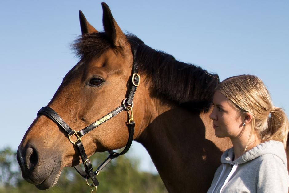 """""""Mycket av det läder som används till hästar är inte miljövänligt"""""""