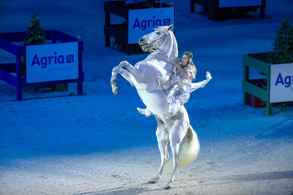 Då släpps biljetterna till hästfesten i Friends Arena