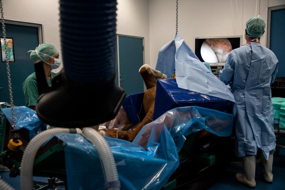 CT-skanning kan förhindra en operation
